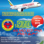 FALLSALE ETHIOPIAN AIRLINES